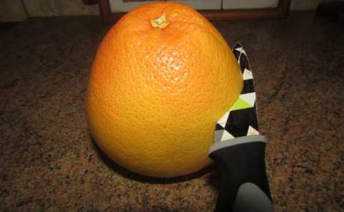 5 фруктов и ягод с антиканцерогенным действием, которые стоит обязательно включить в рацион